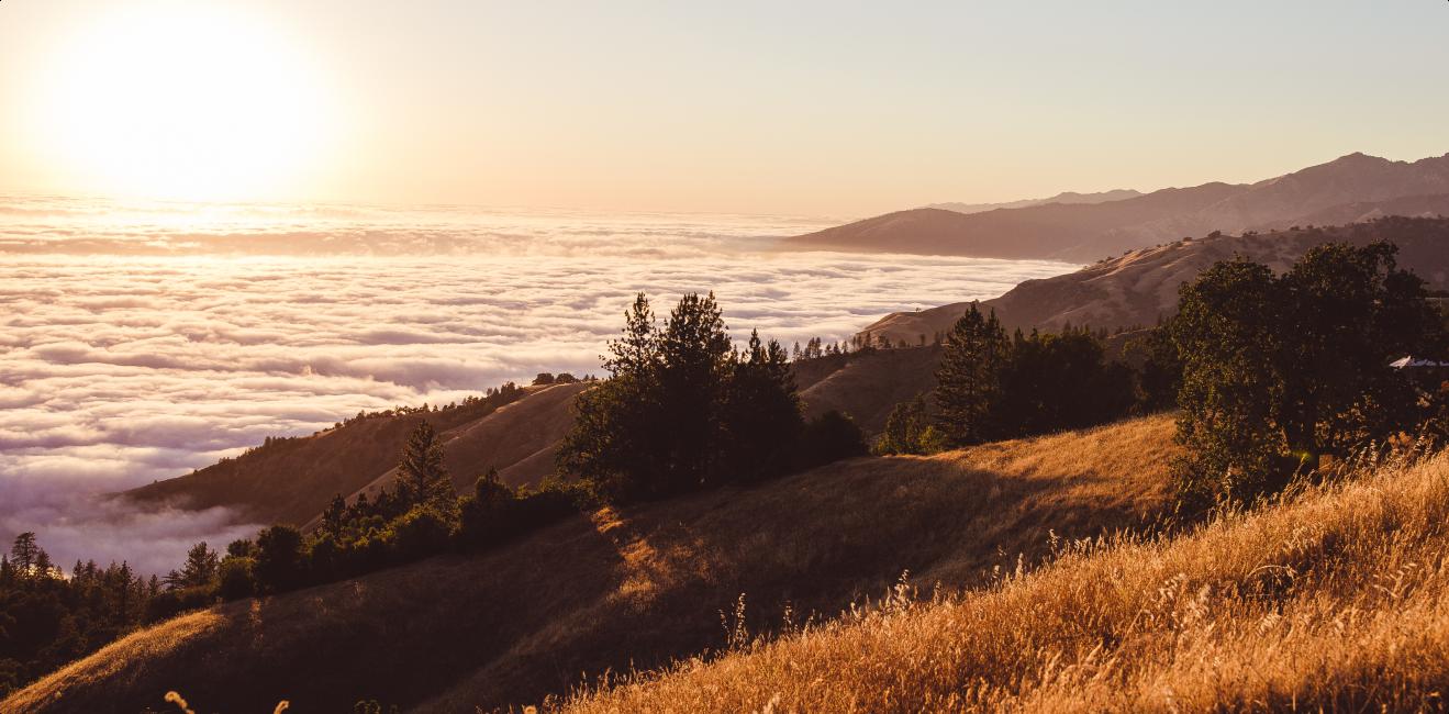 Featured Image, Big Sur, 2021