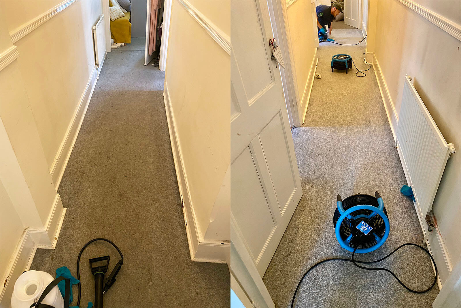 before after carpet hallway cleaning rubix clean in london, uk