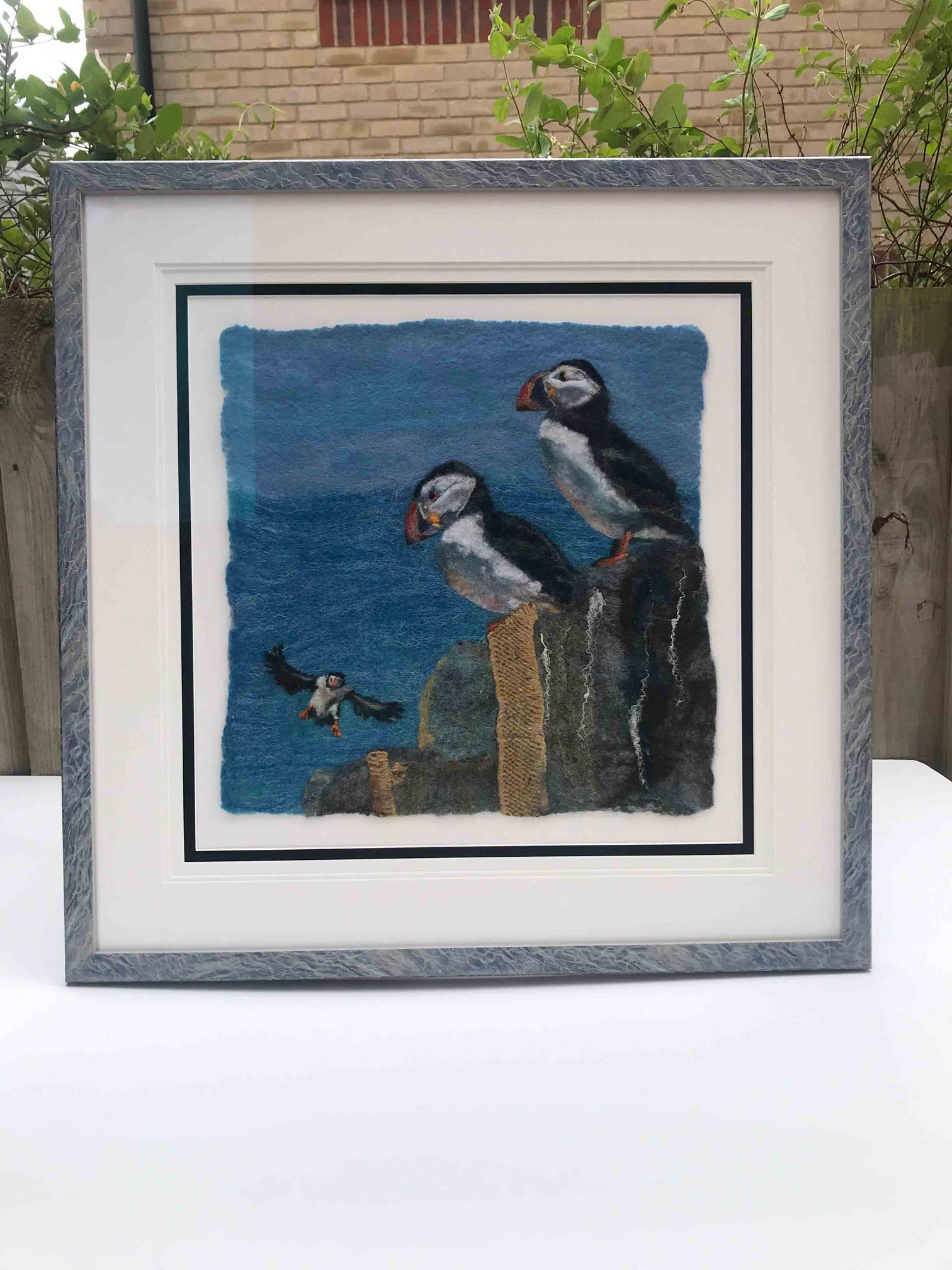 Framed Picture of Puffins
