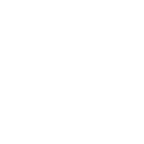 Safari web browser icon