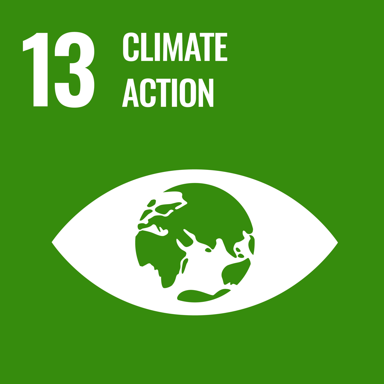 UN sustainable development goal 13
