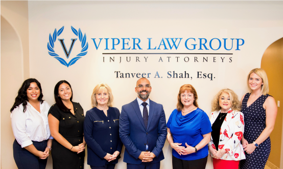 Viper Law Group Team
