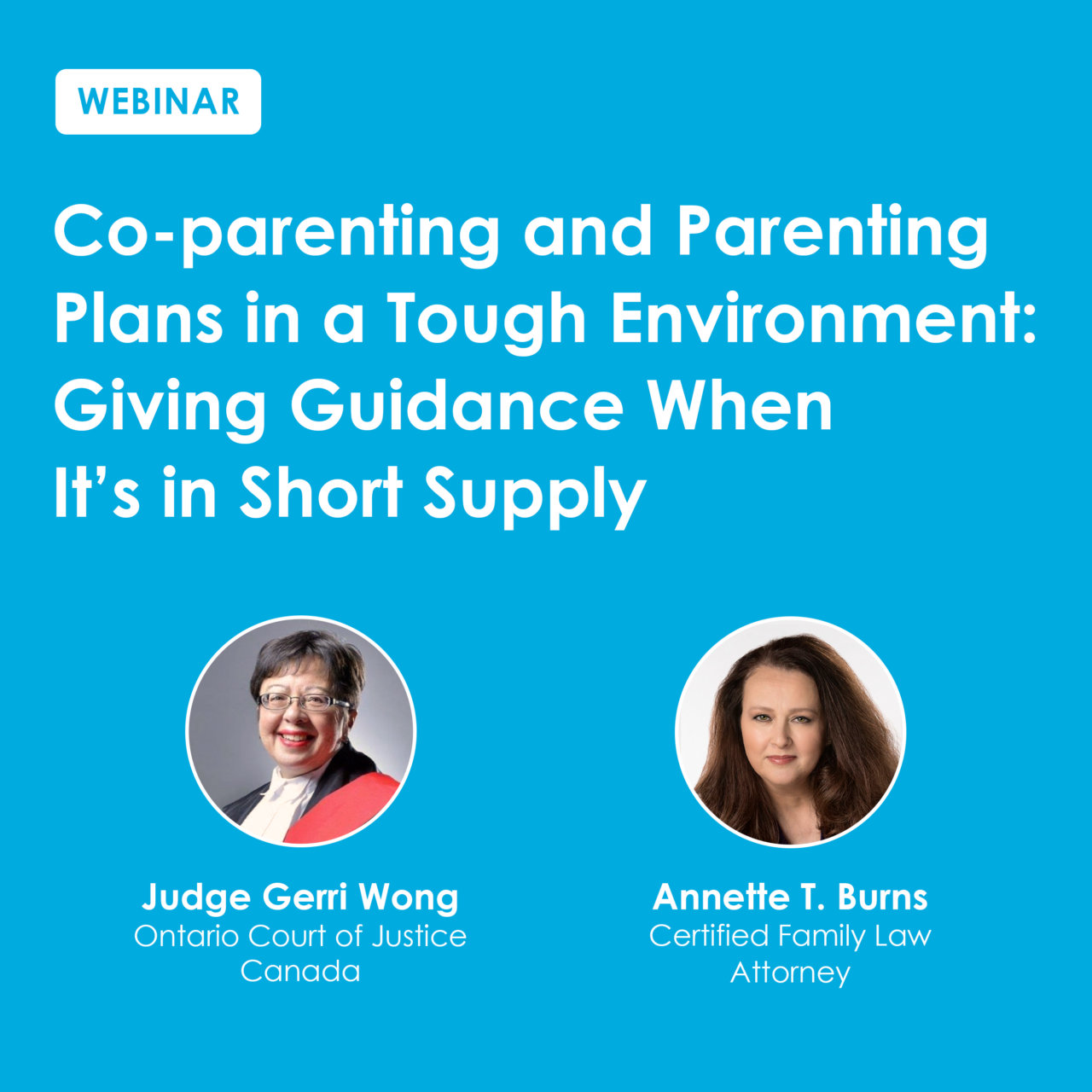 Co-Parenting and Parenting Webinar