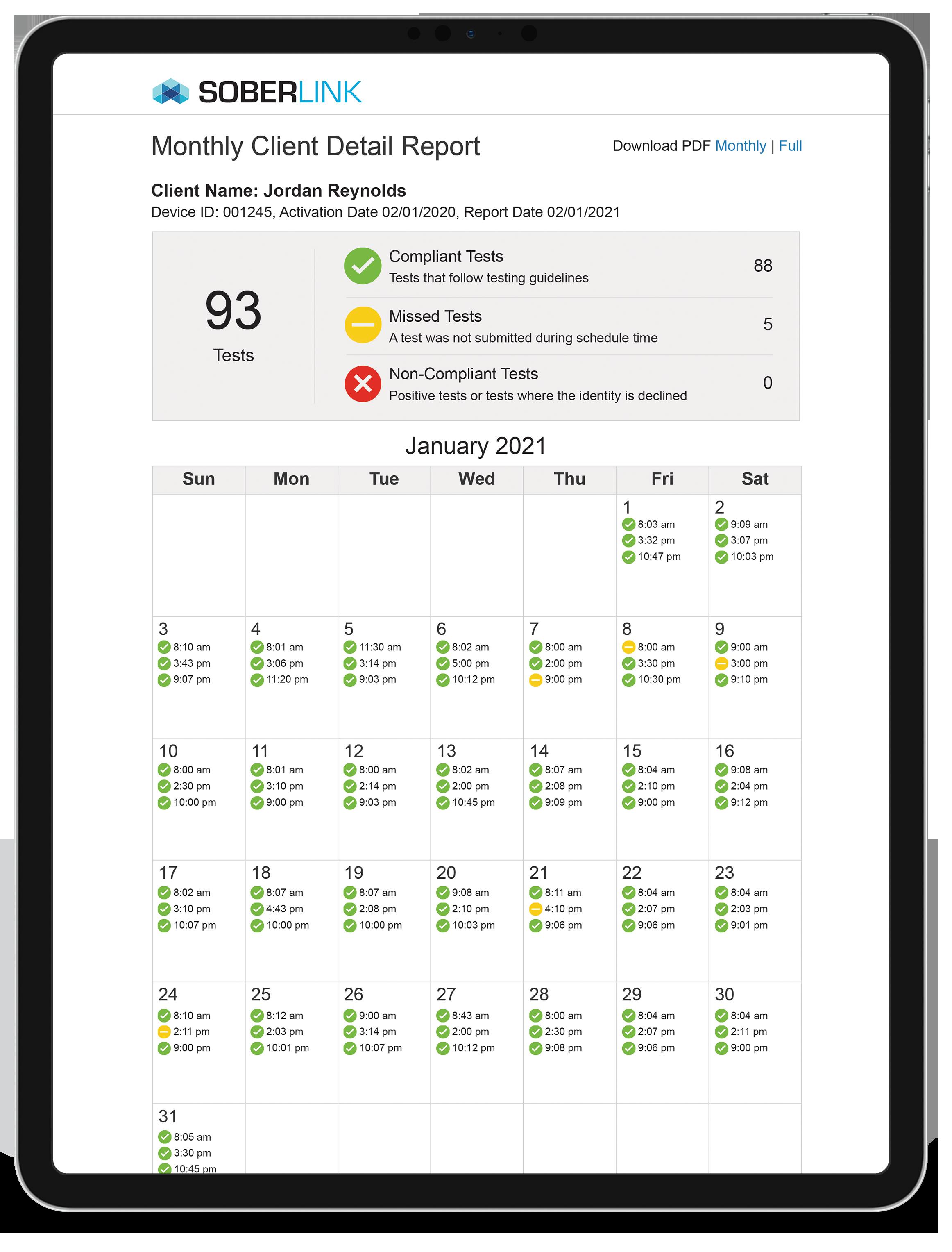 iPad Pro Portrait Monthly Advanced Report 2021