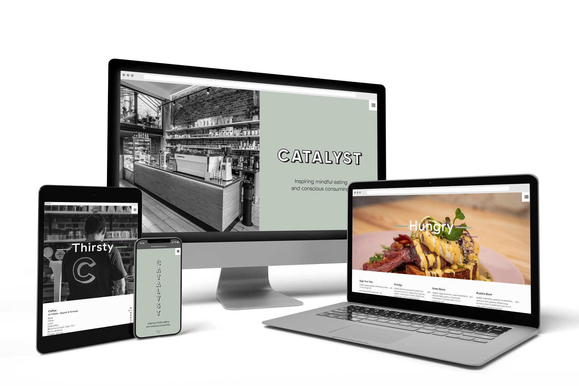 Catalyst website on all devices