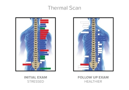 Thermal Scam