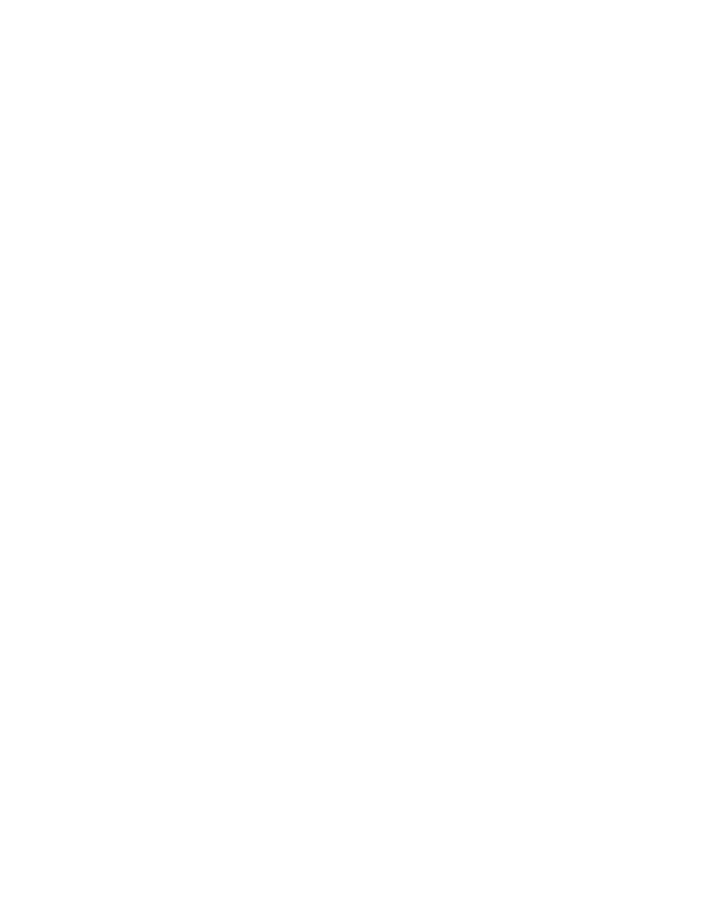 Logo BitStream