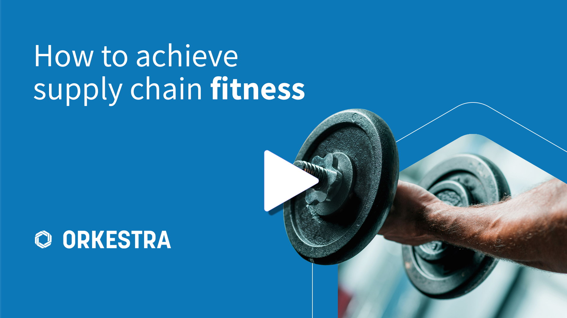 How to Achieve Supply Chain Fitness? Modern Technology and Human Capability - Work Together As One