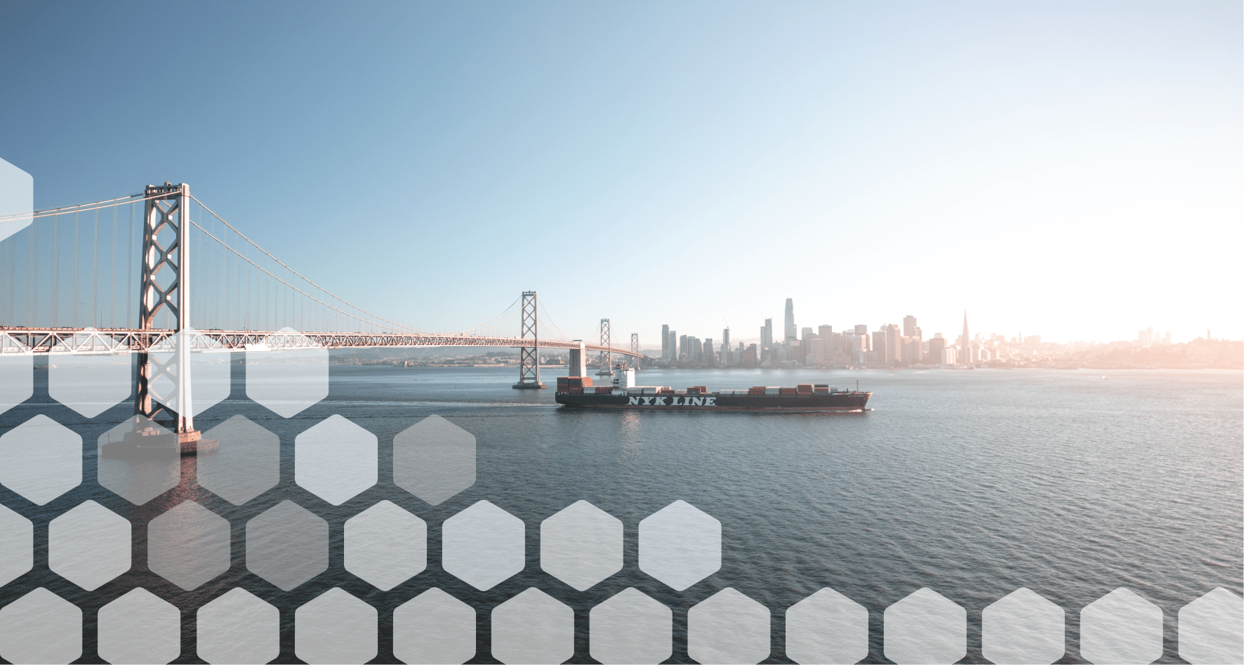 Ocean Freight Strategy