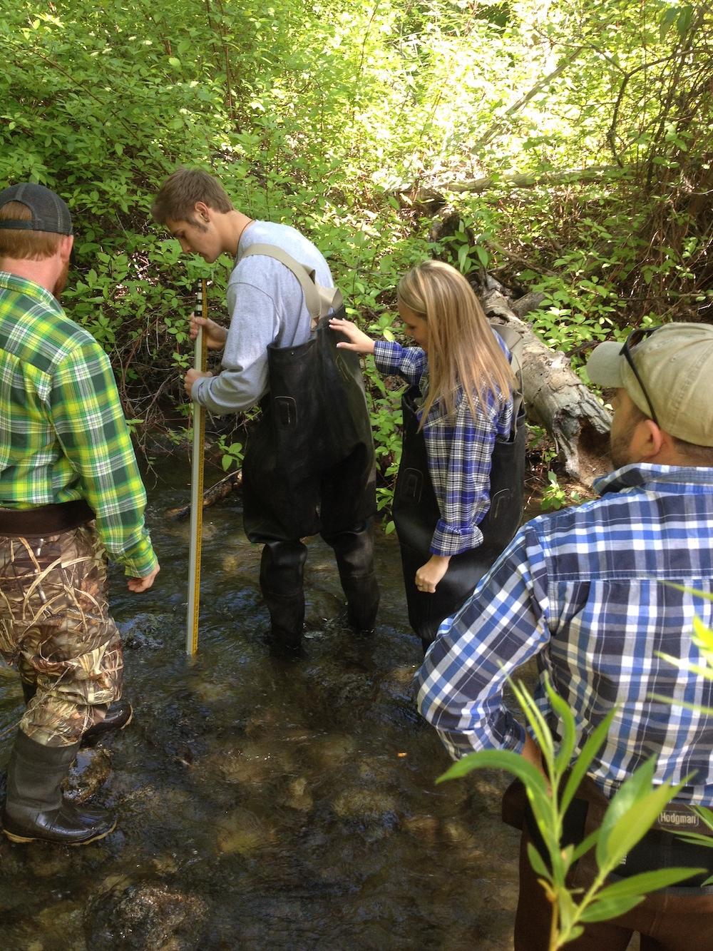 Kids in the Creek - hands-on outdoor education program