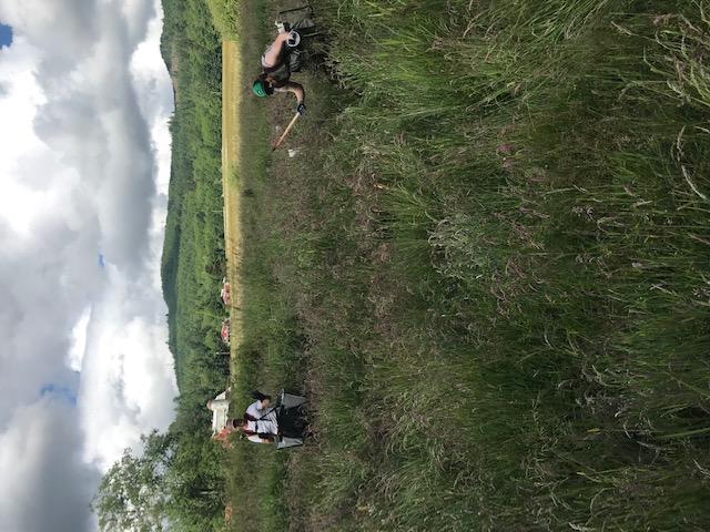 Conservation Crew planting in the Skokomish Valley
