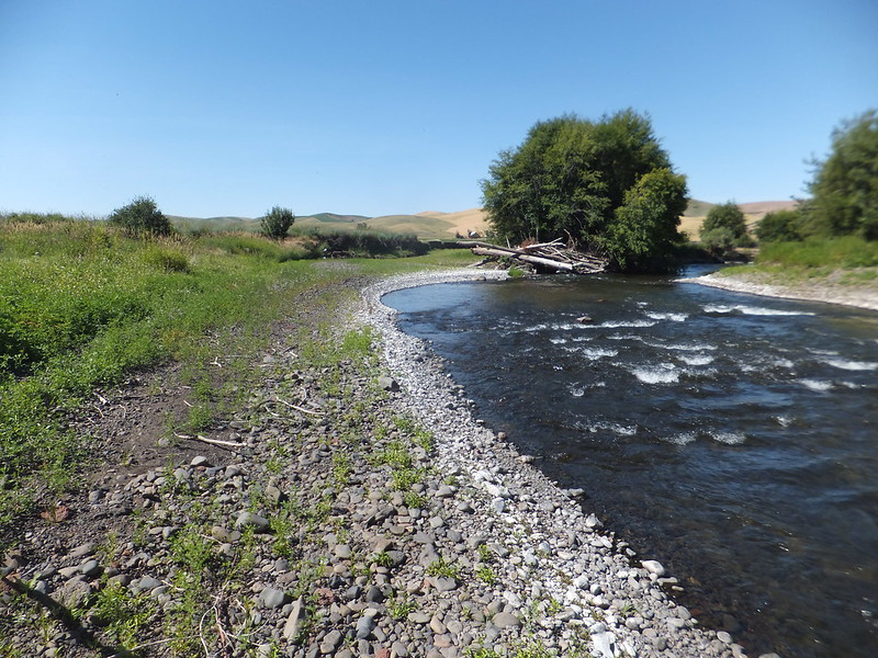 Riffles in the Touchet River