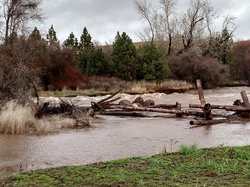 During high water, these structures dissipate river energy and create critical refuge areas for salmonids
