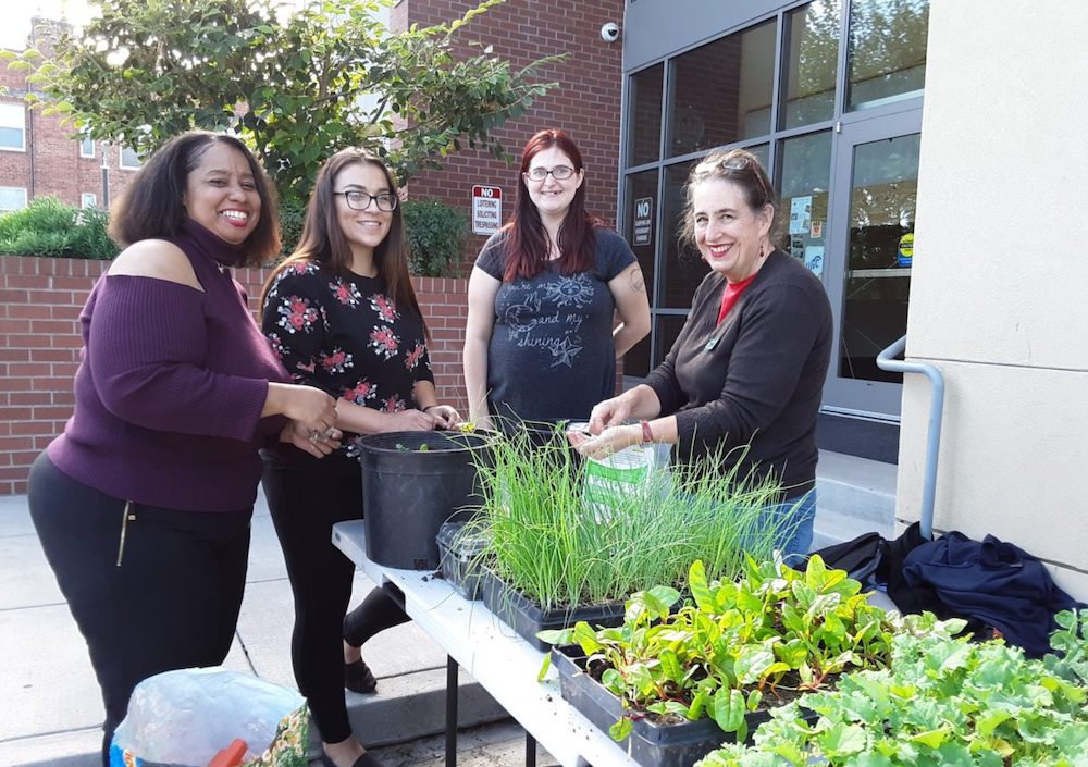 Container gardening class