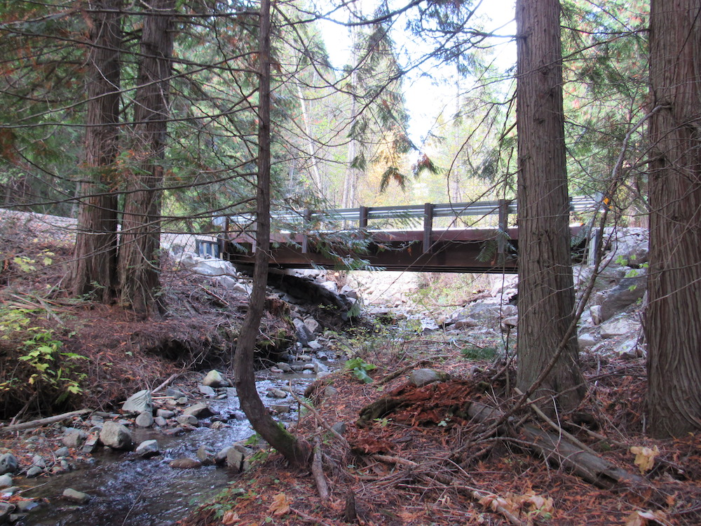 Family Forest Fish Passage project