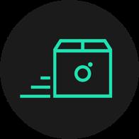 Spring Icon für schneller Versand