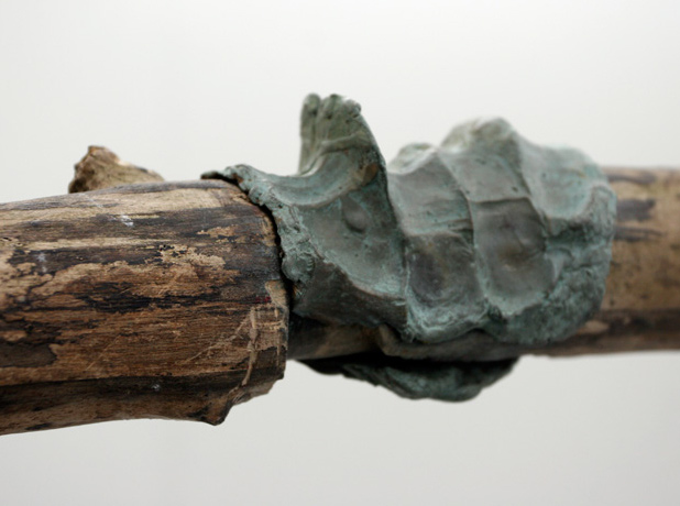 Darren Norman, Organic 1 (detail), 2010