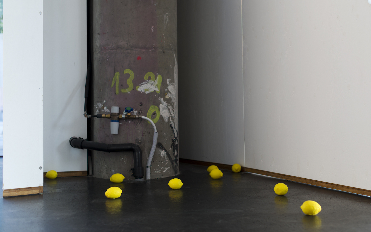 Charlie Godet Thomas, Virtues in Disarray, 2013-2017. Nine lemons, cast rubber, pigment and lemon oil. Photographer: Nici Jost.
