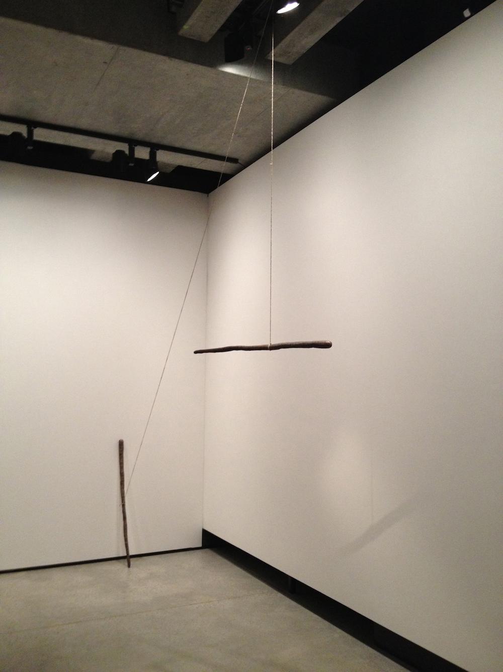 Sam Porritt, Carrot Shaped Stick, 2013. Installation view. Courtesy of MONA, Tasmania, AU. Photographer: Remi Chauvin.
