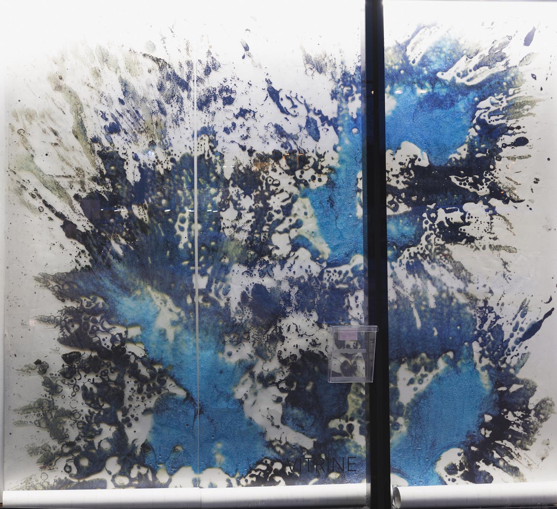 Maya Rochat, Arresting fragment of the world (Dispersion 1), 2017. Digital print on transparent vinyl. 400 x 300 cm.