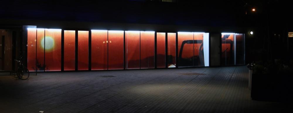 Michael John Whelan, Only In, 2015. Installation view. VITRINE, London.