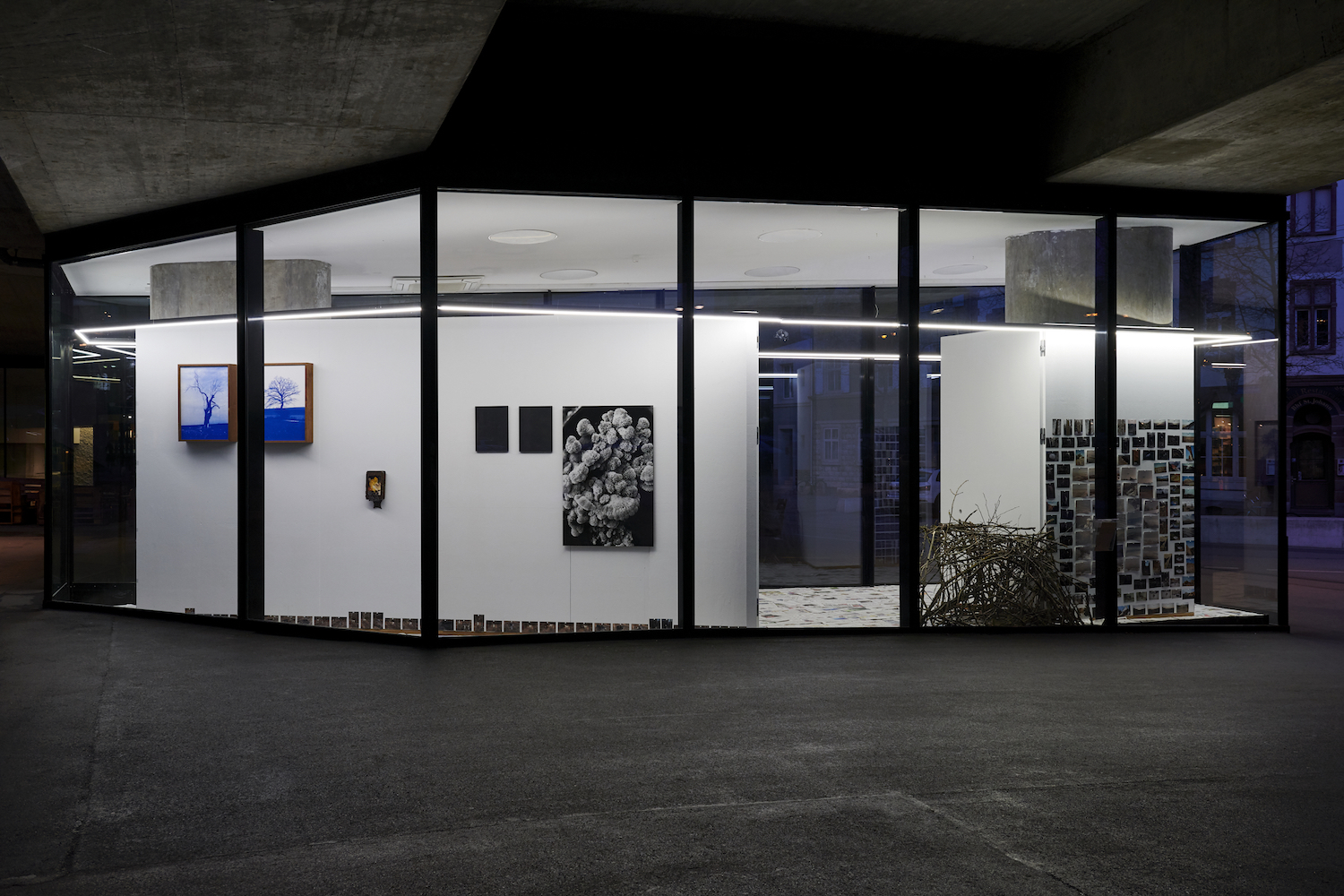 Our companion, our other, Installation view, 2020. VITRINE, Basel. Photographer: Nici Jost.