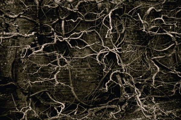 Alison Mellor, Untitled (Mood Trigger), 2009