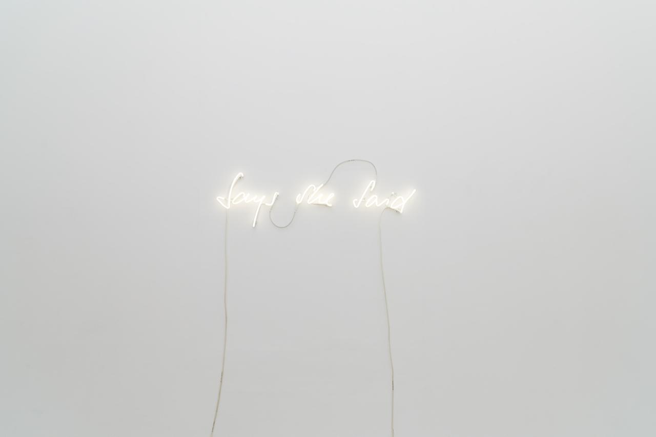 Nicole Bachmann, Says She Said, 2015. Neon.