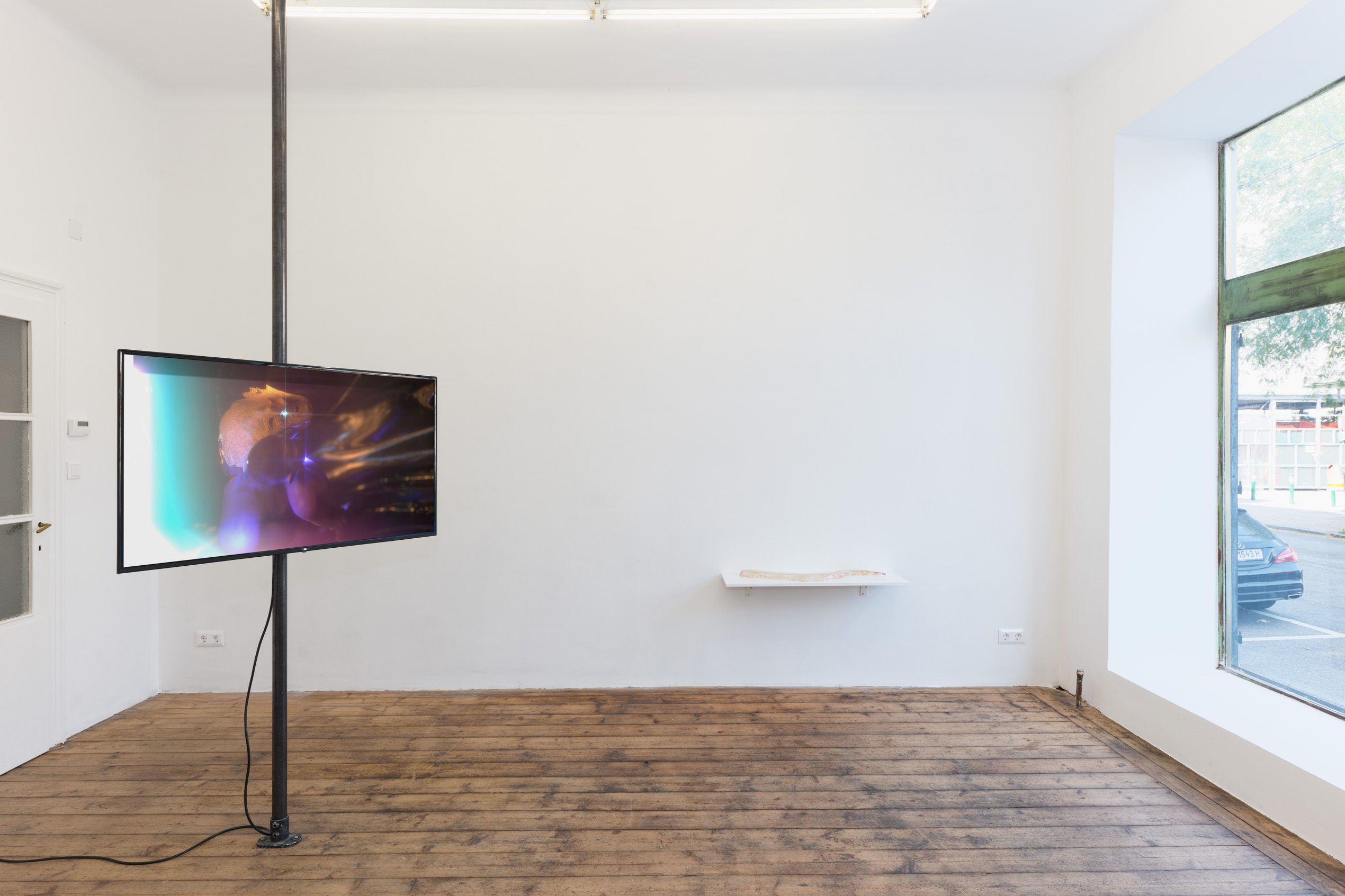 Tarek Lakhrissi, I wear my wounds on my tongue, 2021. Installation view Kevin Space, Vienna, AT. Photographer: Maximilian Anelli-Monti.