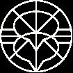 OnlineCommunity-Icon