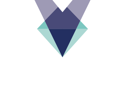 Verex Group Logo