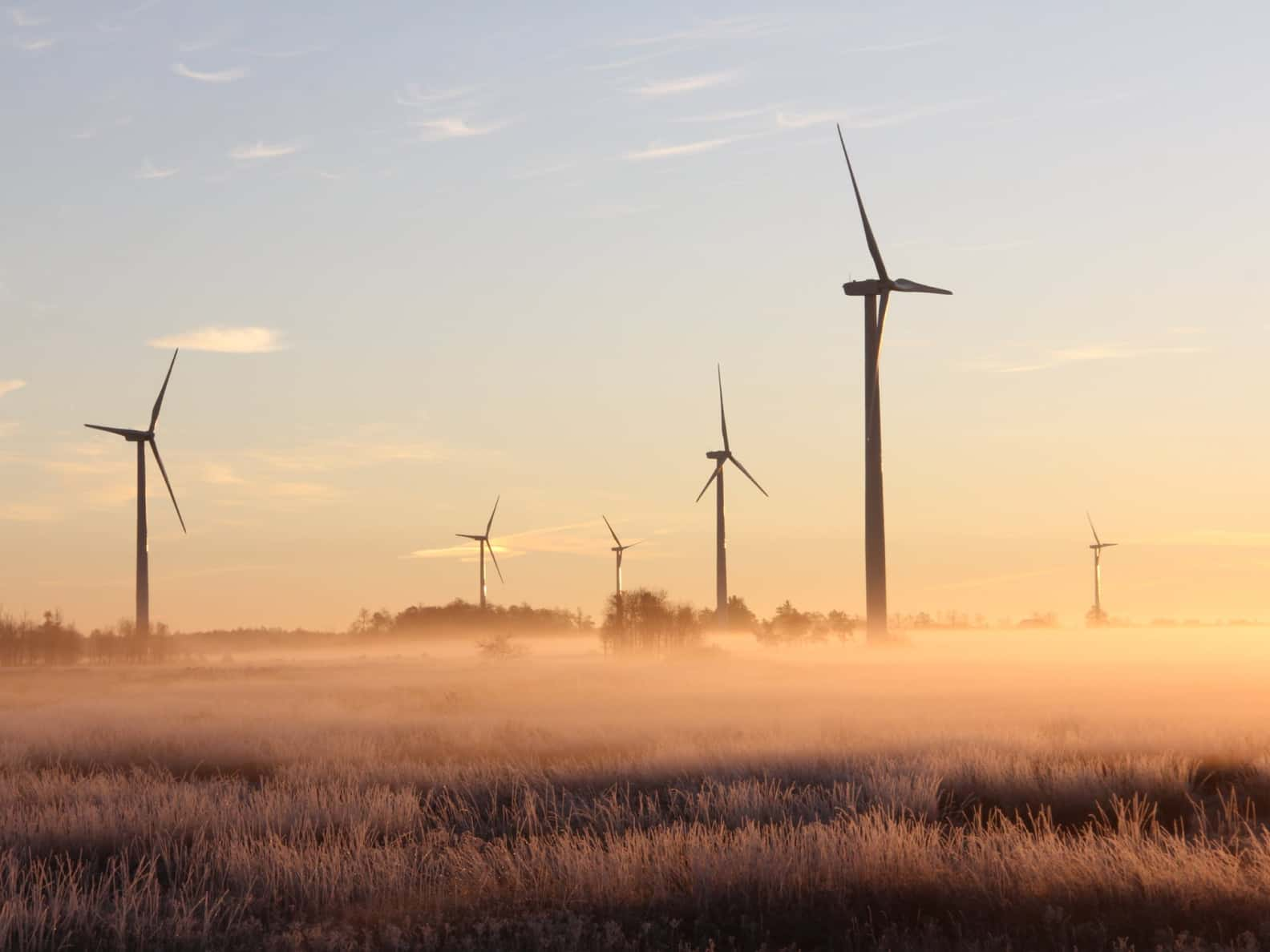 A wind power farm at sunset.