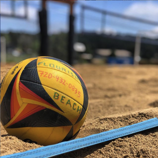 volleyball in colorado