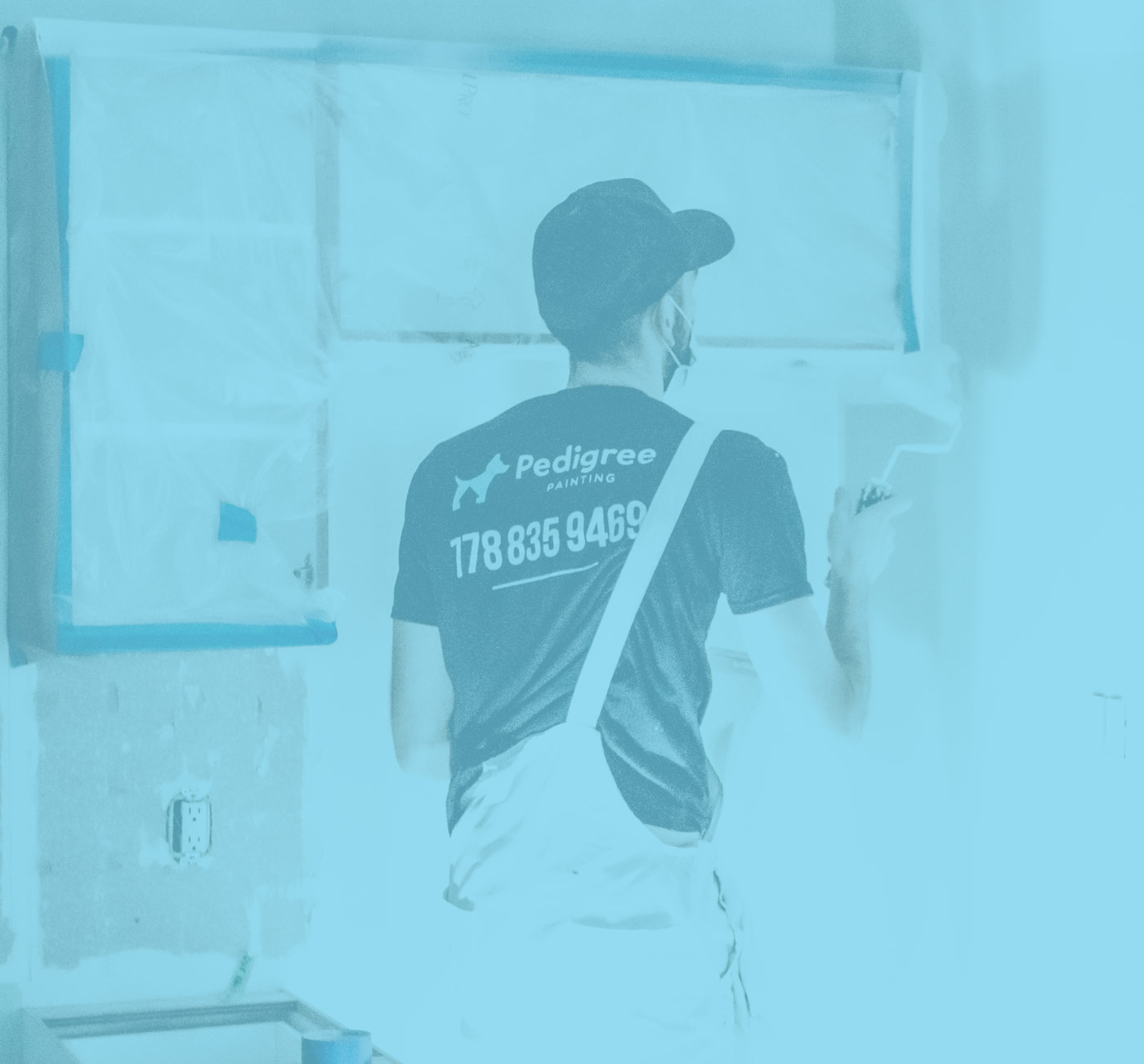 New Construction Painting Services, Pedigree Painting
