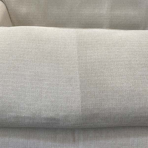 Upholstery cleaning in Pingree Grove