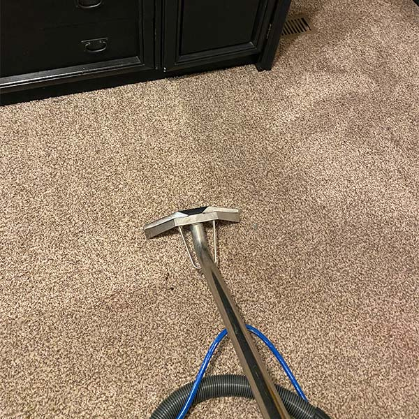 Steam carpet cleaning in Pingree Grove, IL