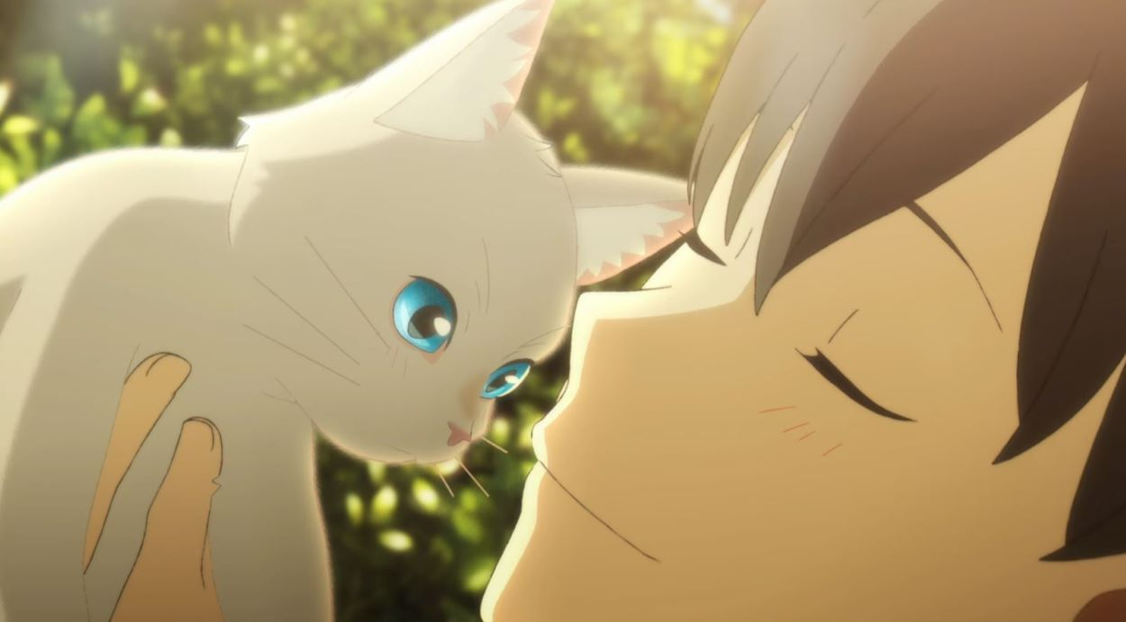 Kento with Taro | A Whisker Away | The Best Cat Anime!