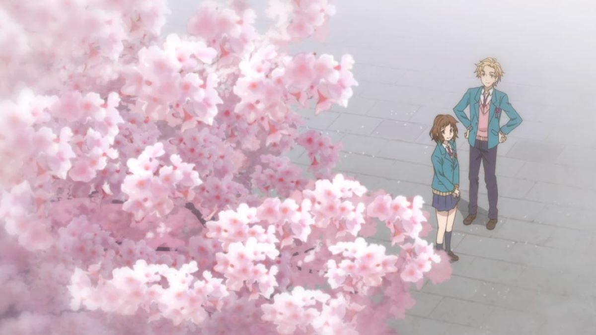 Miou and Haruki meet for the first time under the cheer blossom | Sakura | Definitions - People and Places
