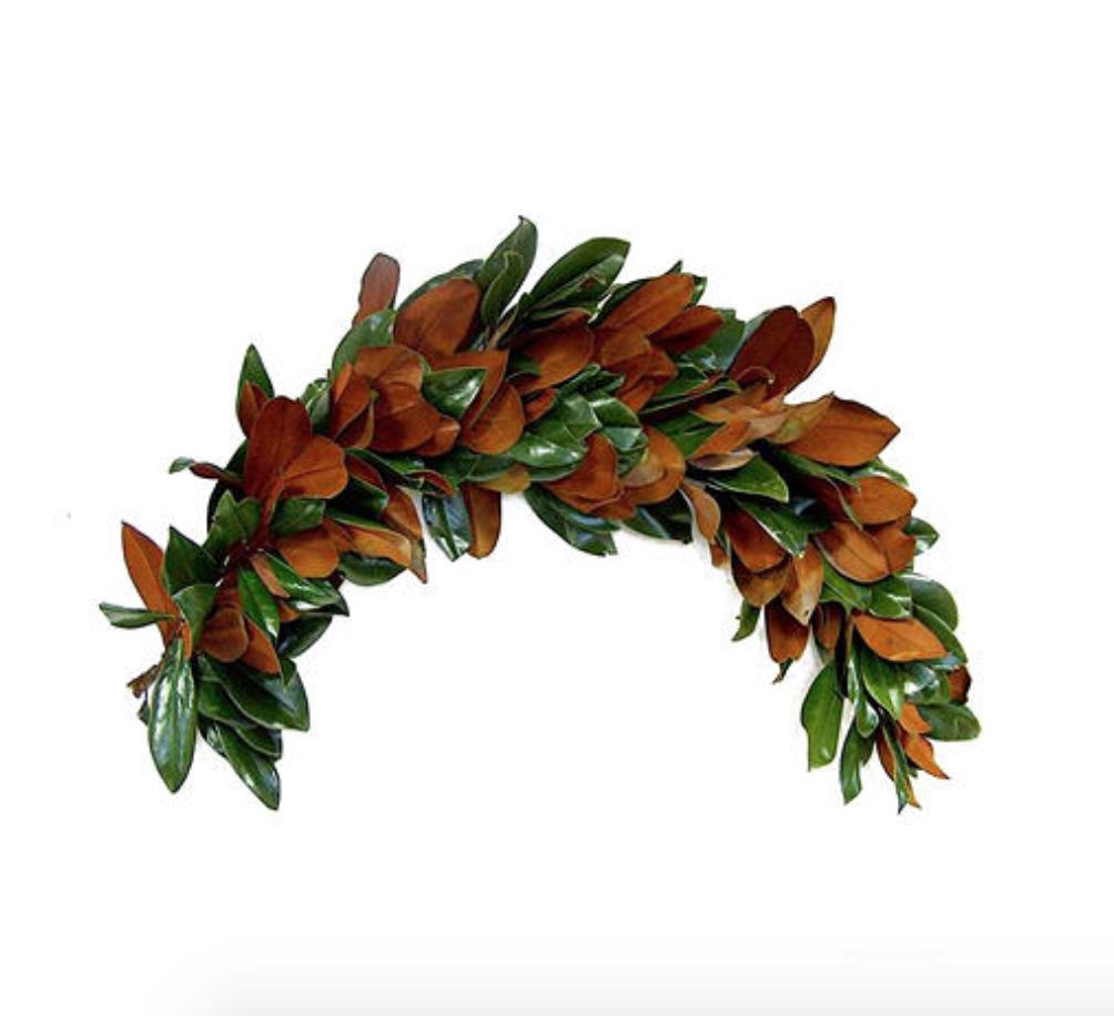 Magnolia Leaf Garland (6 ft.) - Fresh