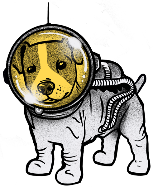Sebe Boekhouders Space Dog