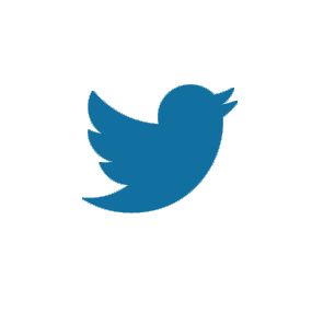 Twitter icon bird in blue