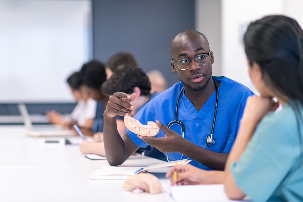 A young male nurse having a discussion with a female nurse seated at a table and holding a plastic representation of a piece of an internal organ