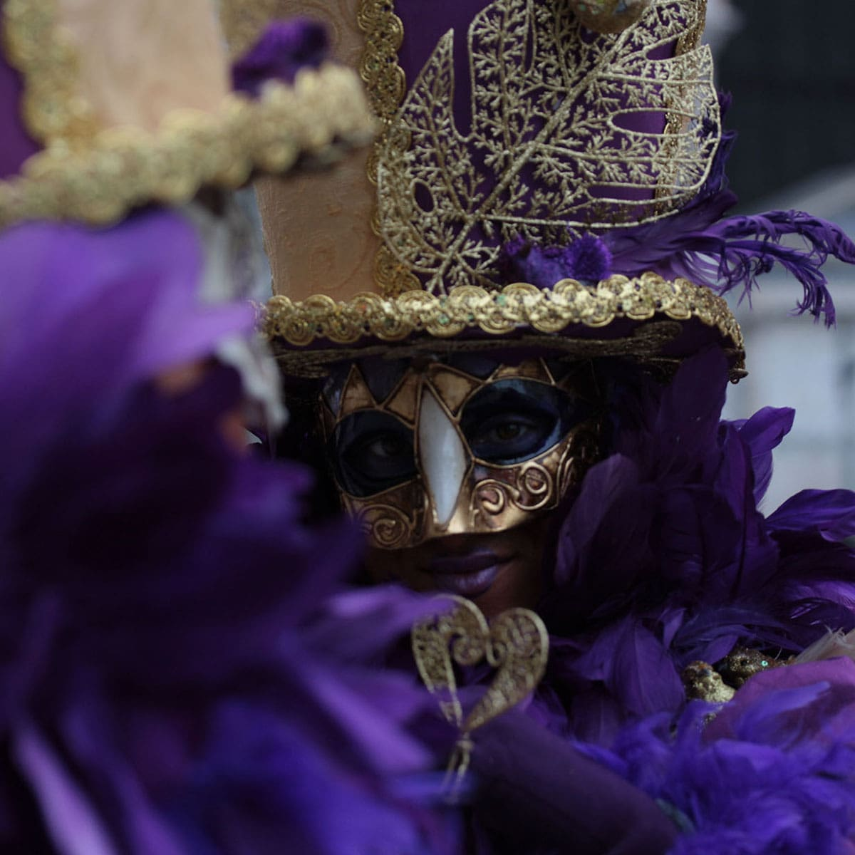 Image of person wearing purple and gold mardi gras mask in feathers