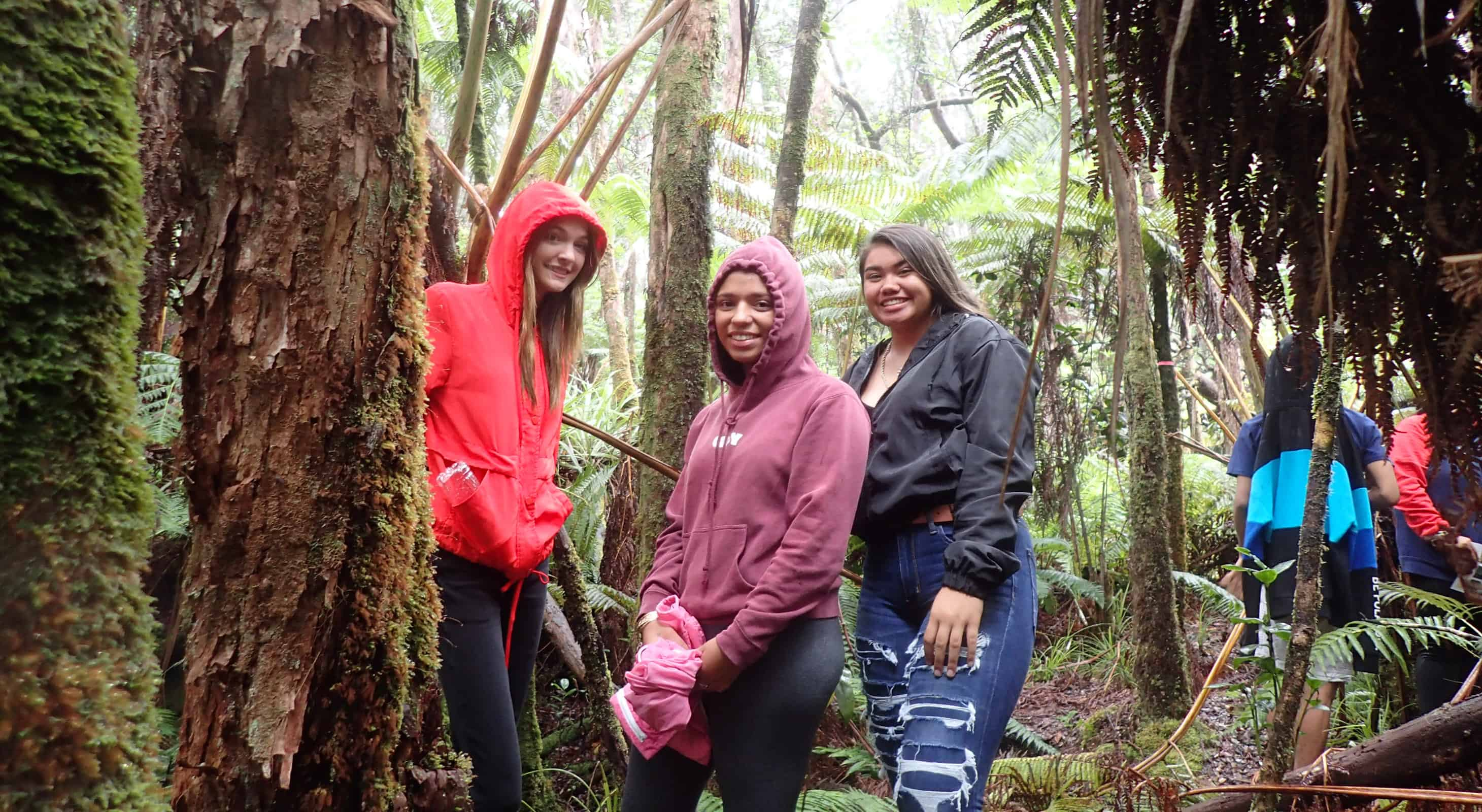 Students in the forest in volcano while on aTeaching Change program