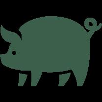 Icon eines Surspeck-Schweins mit Ringelschwänzchen. Farbe: Grün.