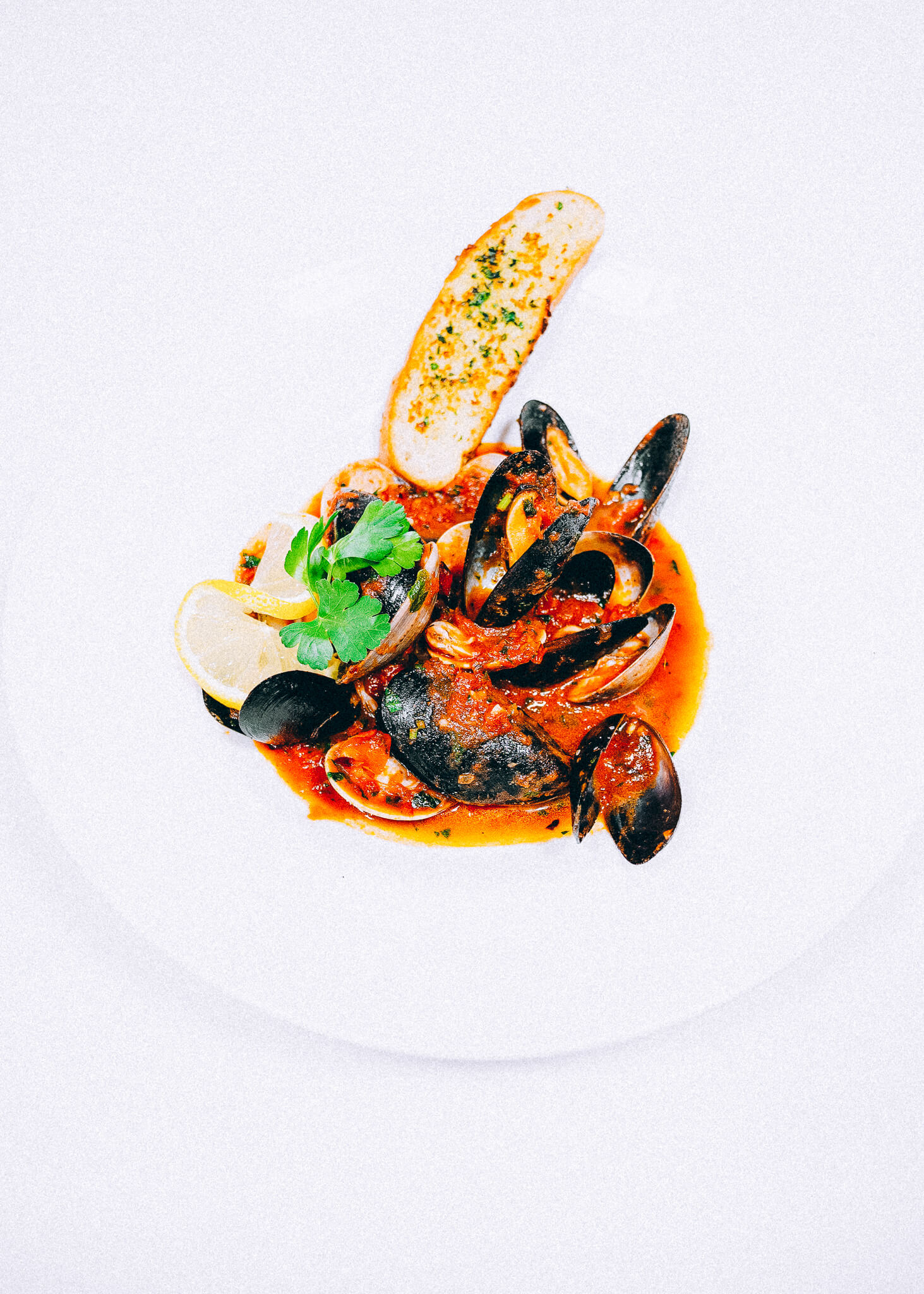 delicious mussels in tomato sauce