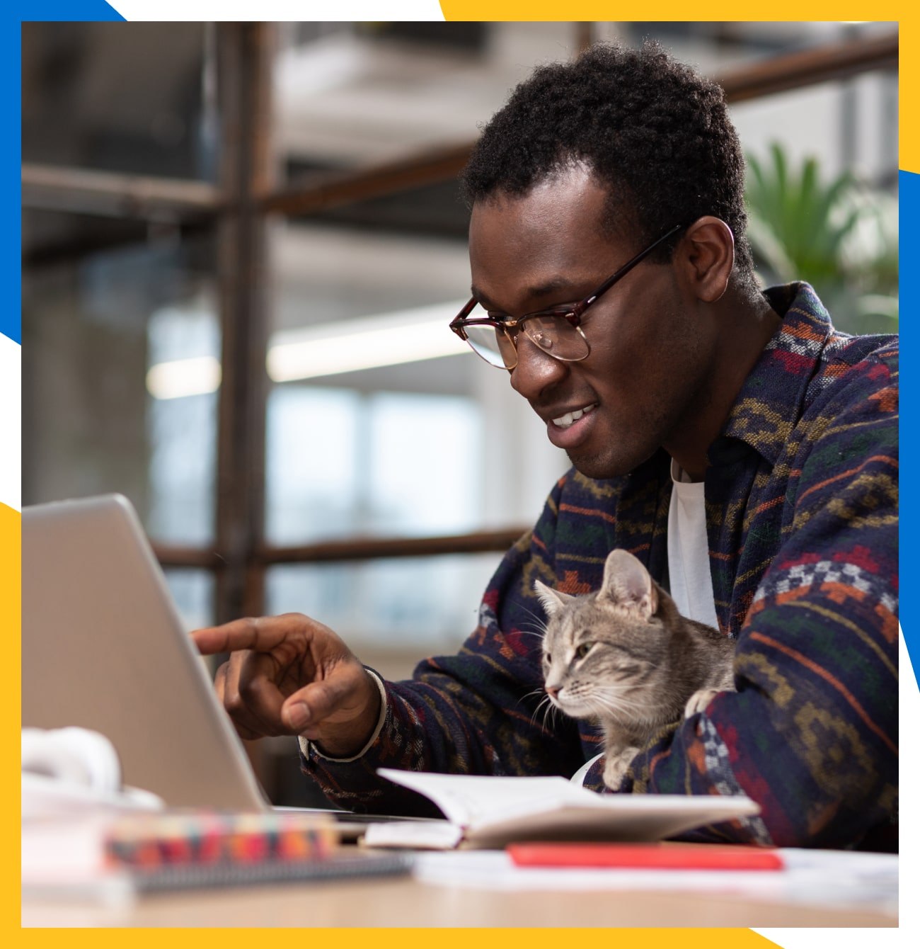 A young man holding a curious cat and pointing at his laptop screen