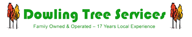 Dowling Tree Services logo. Family owned and operated - 17 years local experience