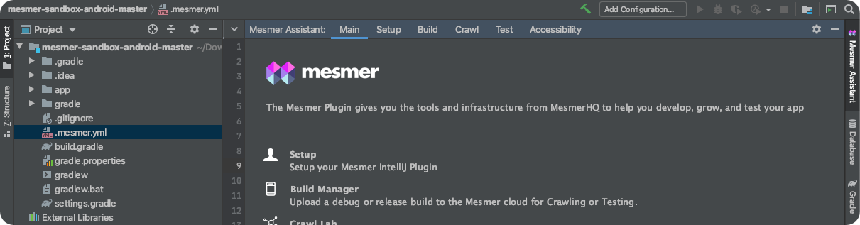 Mesmer Assistant as a side tab in JetBrains IDE