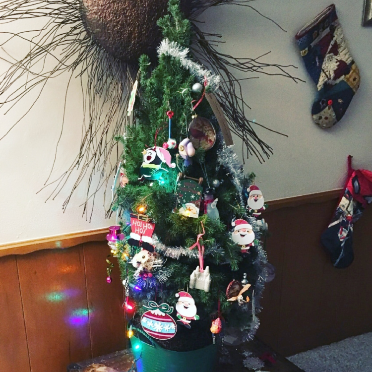 This adorable apartment sized living Christmas tree was enjoyed in a home with young children.